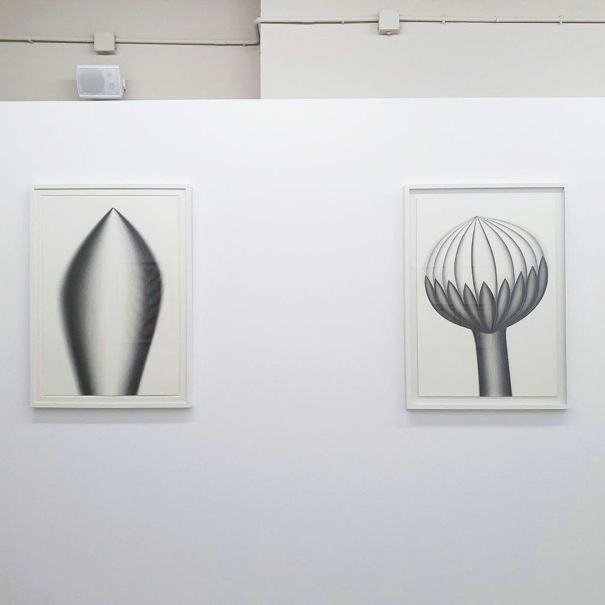 nieves-torralba-botanica-magica-10